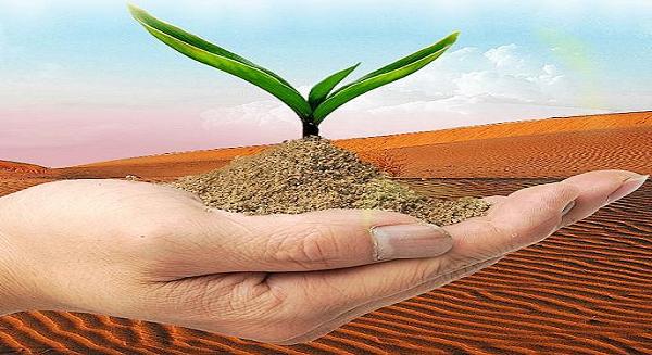 مشاريع خيرية بالكويت