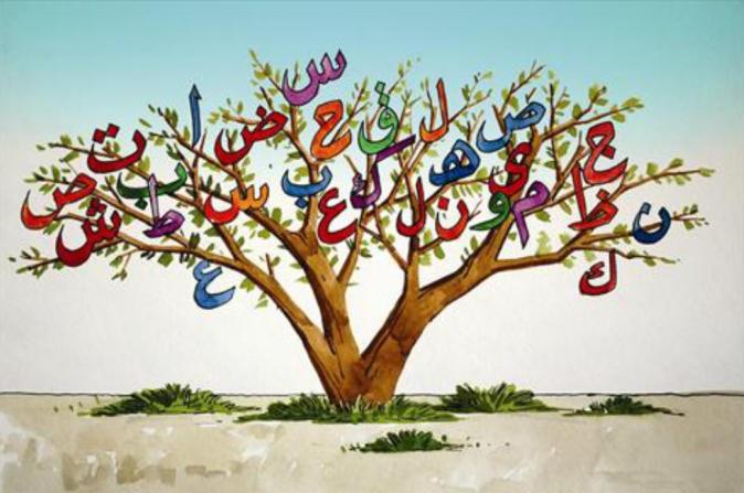 افتتح معهد كامز للتدريب الأهلي التابع لـجمعية النجاة الخيرية بالتعاون مع إدارة الشؤون النسائية بلجنة التعريف بالإسلام بالروضة دورة لتعليم اللغة العربية للشخصيات الدبلوماسية