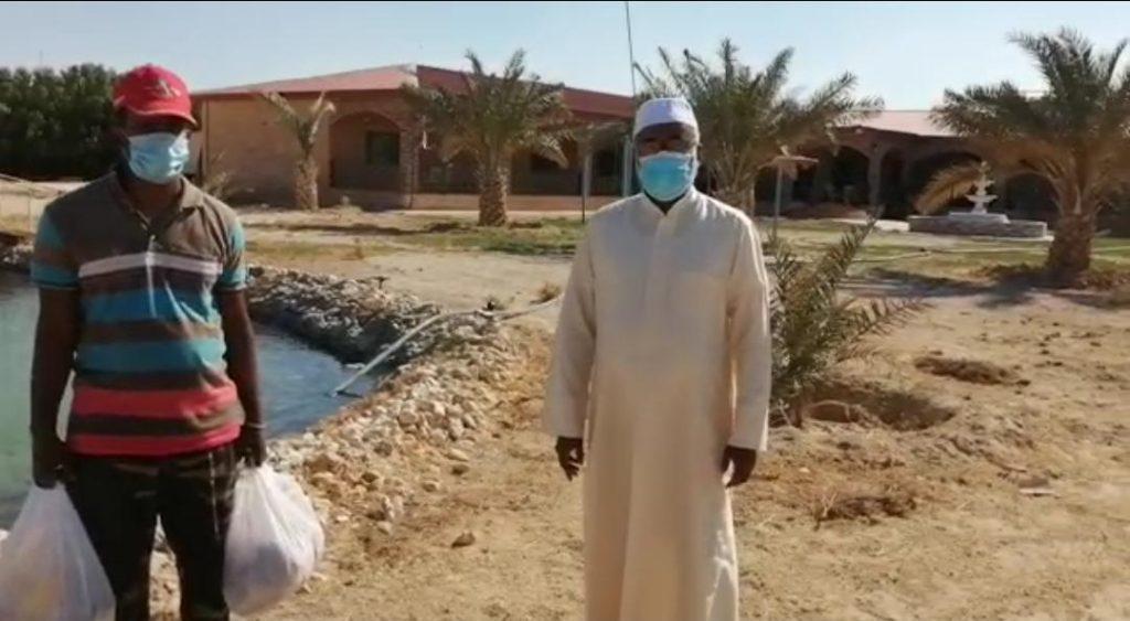 توزيع التعريف بالإسلام للسلال على ضيوف الكويت بالوفرة